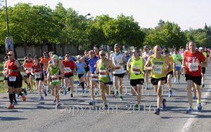 Medio Maratón de Almansa copia